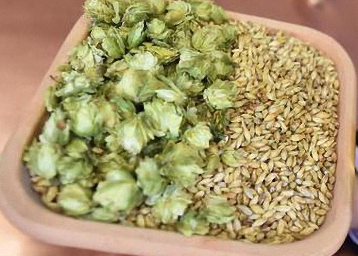 Хмель и зерна для пива