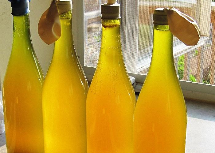 Настаивать вино из одуванчиков в стеклянной банке