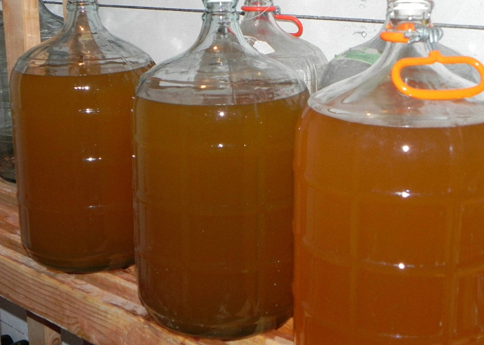 Как сделать медовуху из водки в домашних условиях