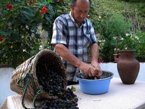 Технология изготовления чачи в домашних условиях