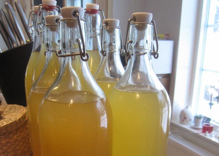 Домашнее вино из апельсинов выдержать в прохладном месте