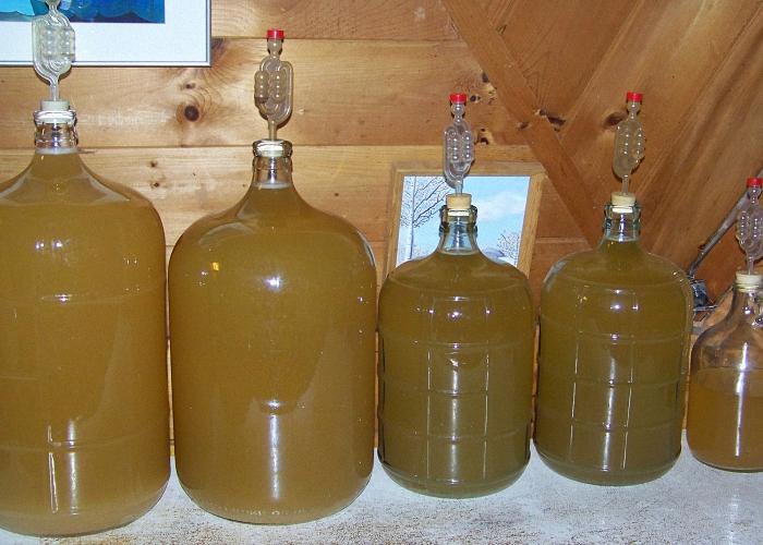 Домашнее вино из груши поставить для брожения