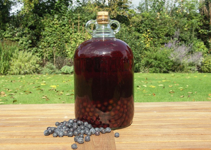 Домашнее вино из терна без дрожжей