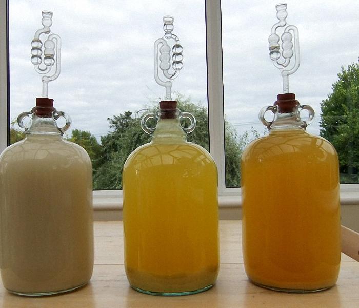 Поставить брагу для вина из мандаринов в теплое место