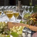 Водка на винограде