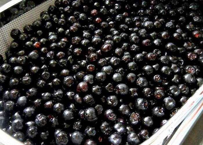 Черная смородина для вина с гвоздикой