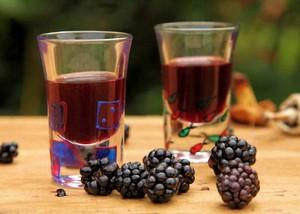 Домашние рецепты вин из ежевики
