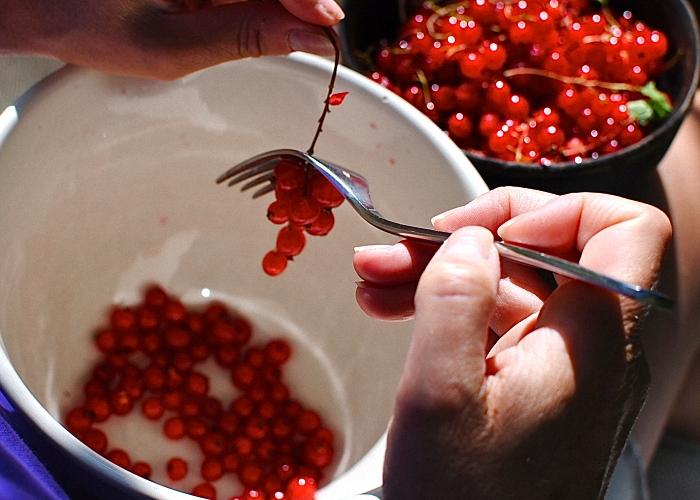 Красную смородину помыть и перебрать