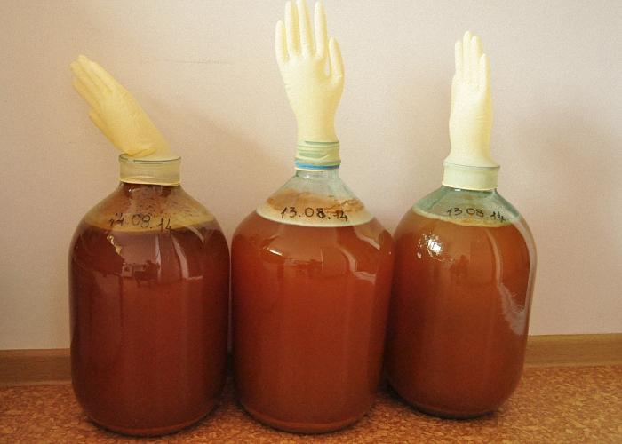 Как сделать брагу из яблочного варенья в домашних условиях - Все Березники