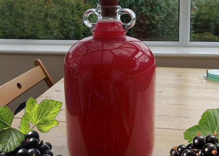 Вино из черной смородины ставим в прохладное место