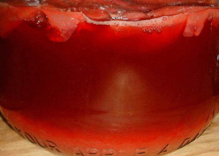 Домашнее вино из клюквы должно хорошо перебродить