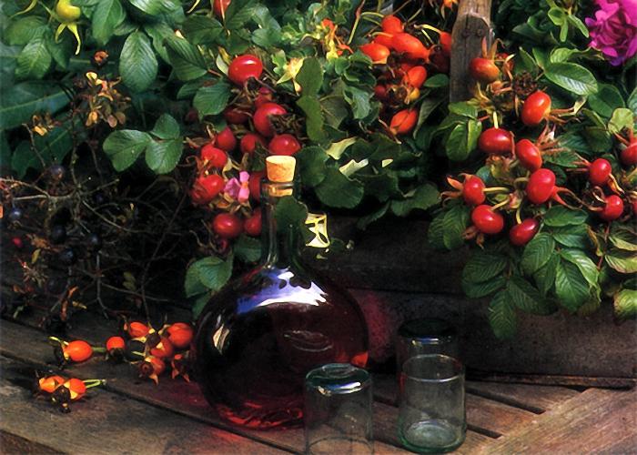 Коньяк из шиповника процедить и перелить в бутылки