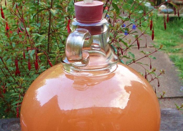 Перебродивший сок рябины закрепить спиртом