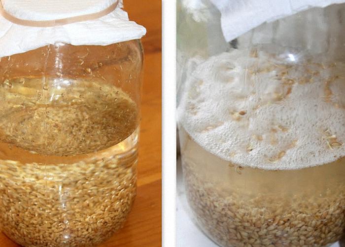 Сусло с пшеницей перемешать и закрыть крышкой или резиновой перчаткой
