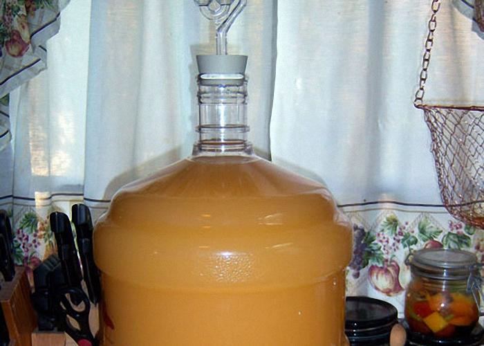Яблочное сусло поставить в тепло для брожения