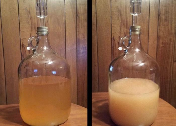 Как сделать с фруктов самогон