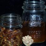 Водка на кедровых орешках