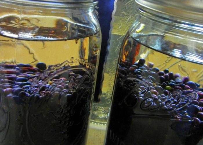 Настойка на черной смородине в домашних условиях