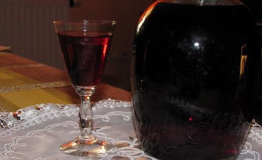 Что можно сделать из терна: рецепты ликеров в домашних условиях на водке и спирту