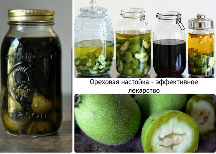 Рецепты настоек на грецких орехах